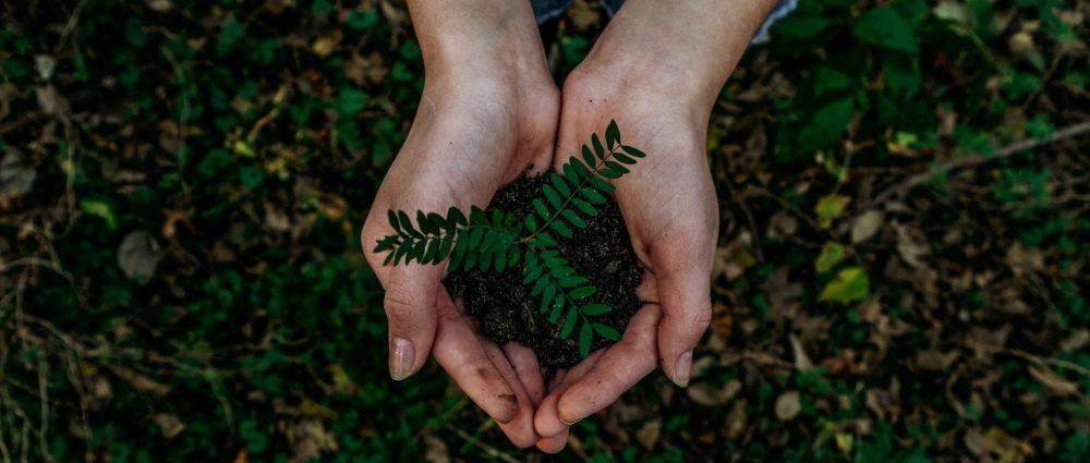 transición circular y ecológica